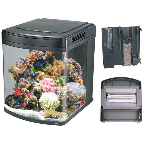 avis sur aquarium marin Aquari11