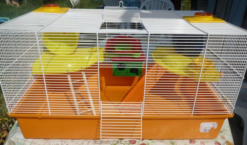 Vend cage avec ses accessoires (13) P1060010