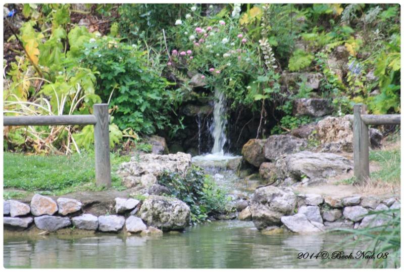 """Jardin des plantes, """"Les Capellans"""" St Cyprien - Page 3 Cadre118"""