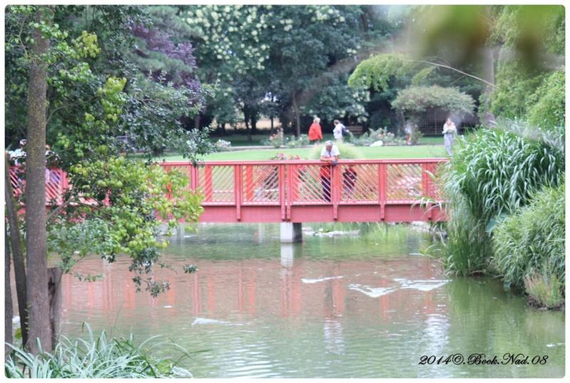 """Jardin des plantes, """"Les Capellans"""" St Cyprien - Page 4 Cadrer92"""