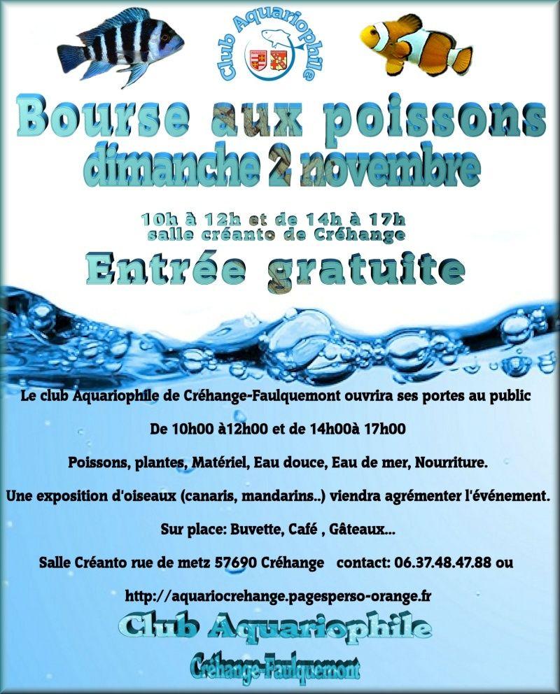Bourse Aquariophile Créhange (dépt 57) - 02 Novembre 2014 Bourse10