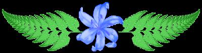 Collecte dans la forêt de Jade. Fleurf11