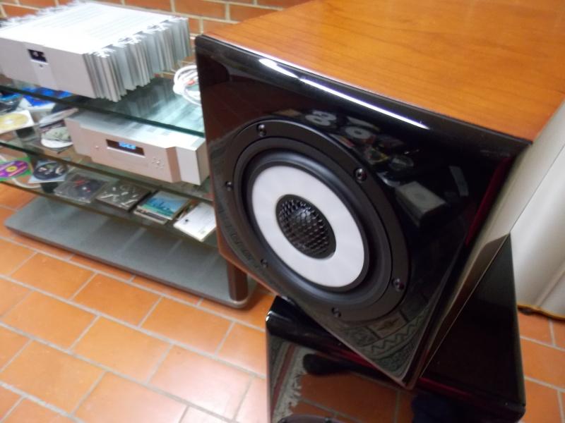 in audizione Vienna Liszt e Airtech 100 Dscn0034