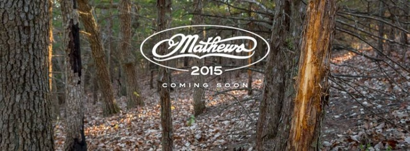 MATHEWS 2015 10479510