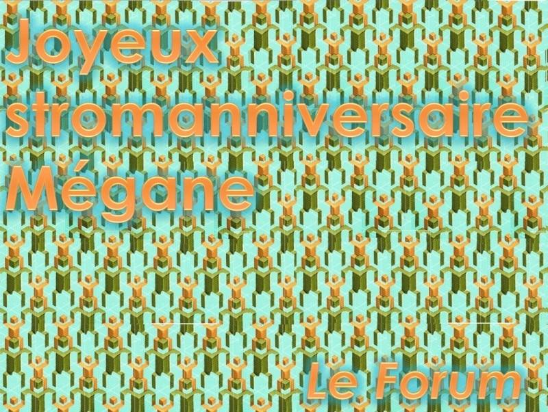 Le stromanniversaire de Mégane ! Stroma12