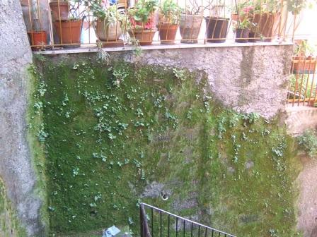 Italie  -  Ligurie, les Cinque Terre - Page 2 Dscf1011