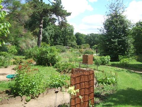 (75) Jardin des plantes - Paris Dscf1710