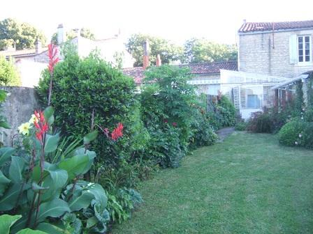 j'ai descendu dans mon jardin - Page 3 Dscf2417