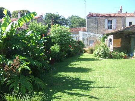 ambiances estivales au jardin - 2014 Dscf3013