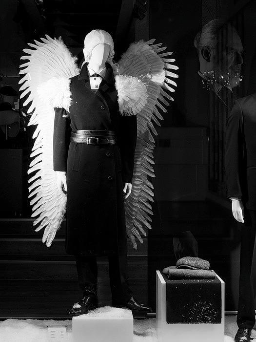 Le songe de l'ange ou une pâle imitation pilouesque. P1160110