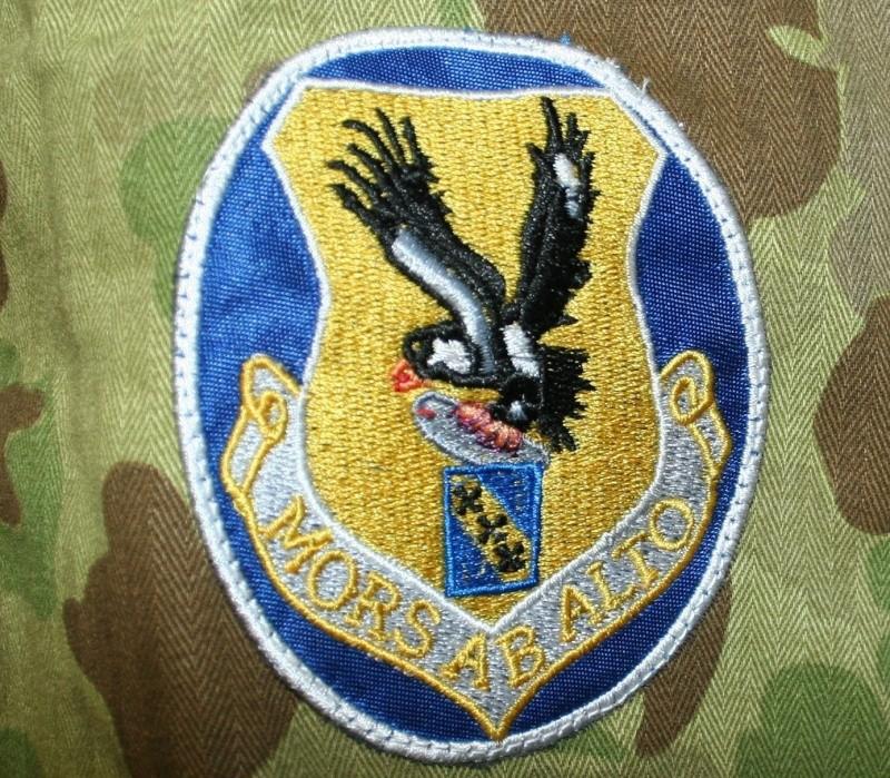 USMC or Army HBT WW2 Camo Original or Reproduction? P44210