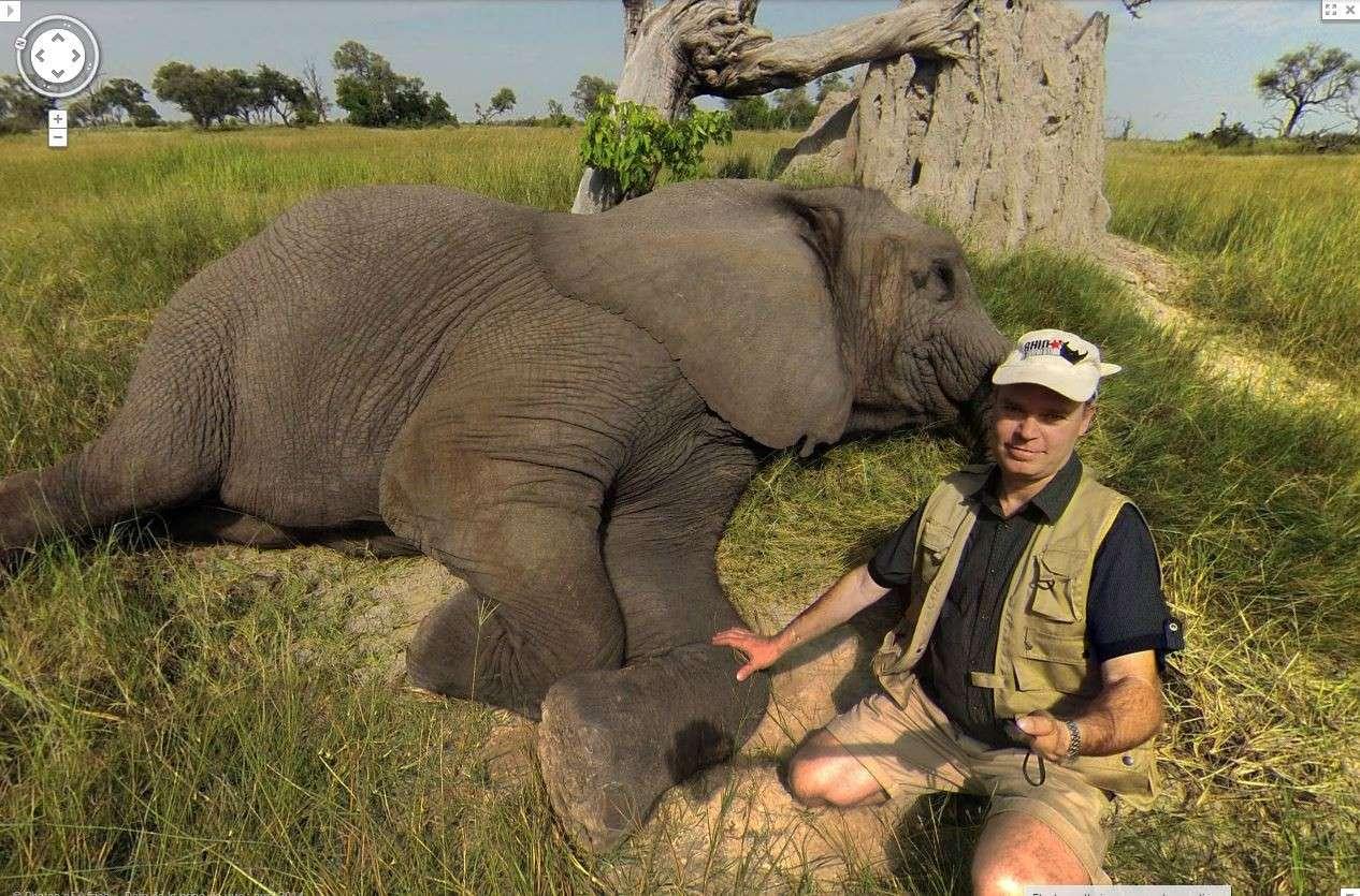 Sur la piste des éléphants de la réserve naturelle Moremi au Botswana [Delta de l'Okavango] !! Elepha10
