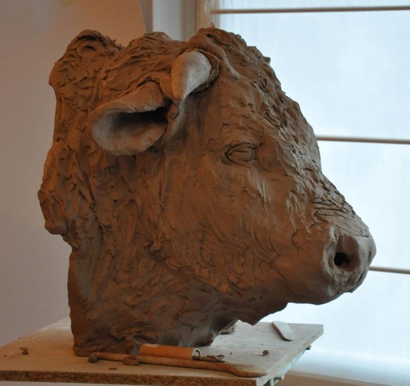portrait de taureau Rst110