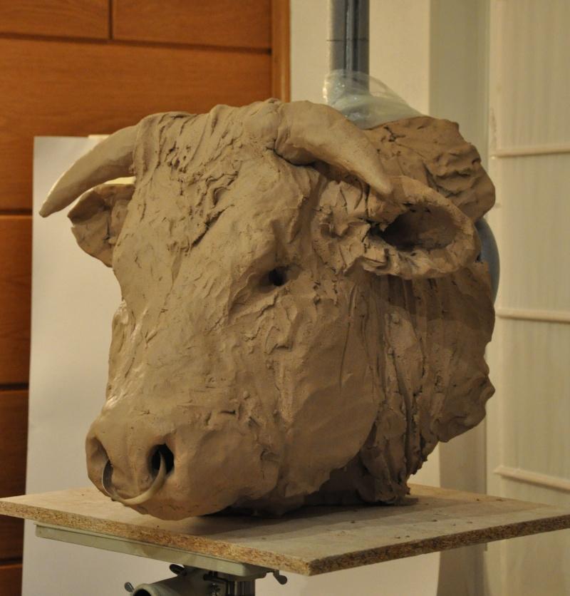portrait de taureau St710