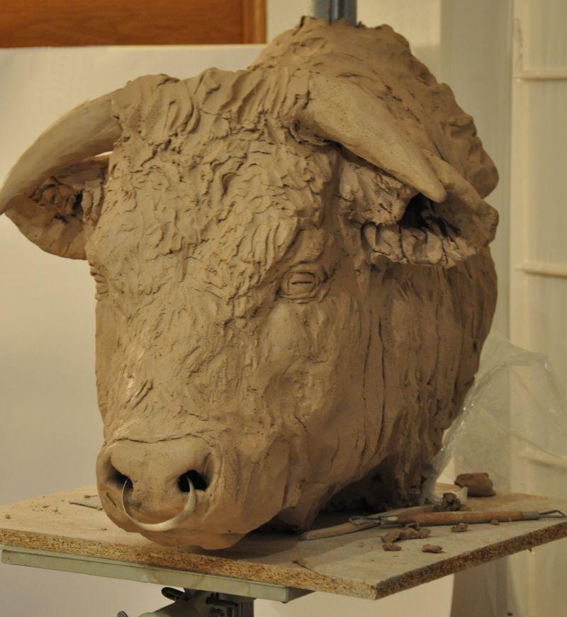 portrait de taureau St9ab10