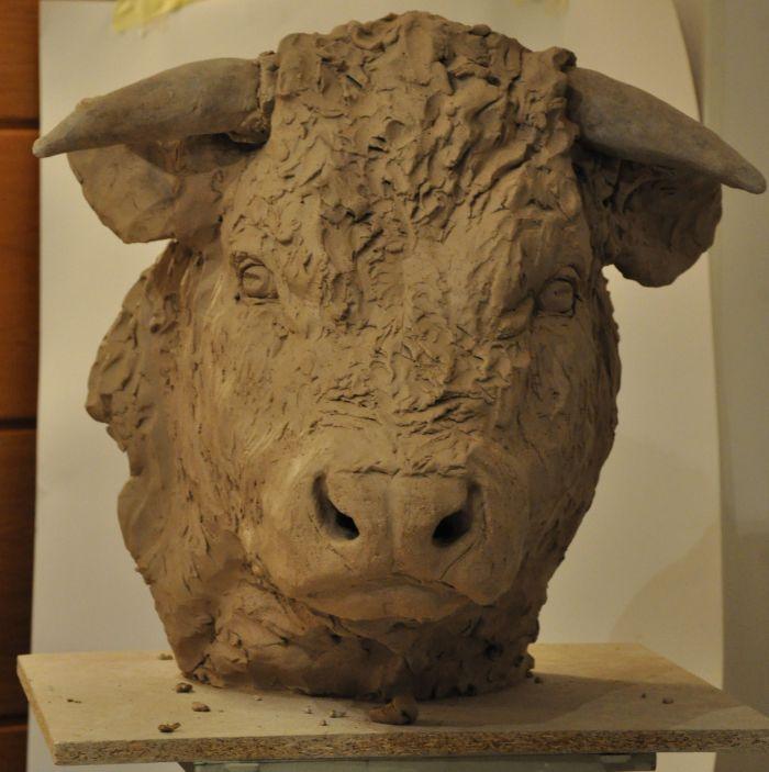 portrait de taureau St9d10