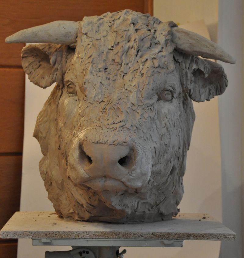 portrait de taureau Taur110