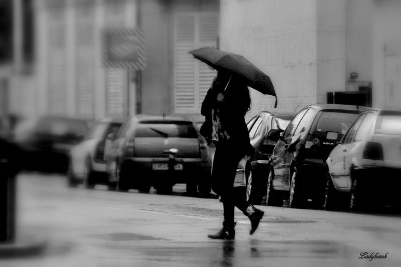 le parapluie Img_2212