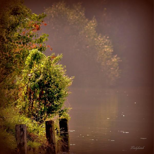 le lac Img_2811