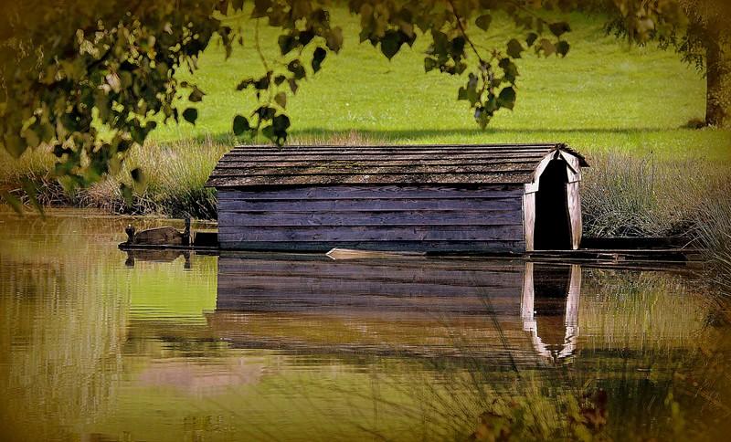 l'étang Img_3314