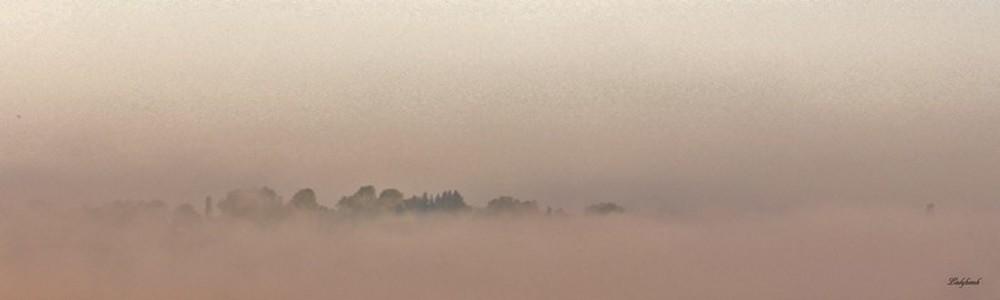 brume et brouillard Img_3412