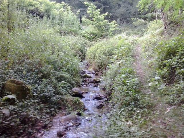 Ruta del Domingo 24/08/´14 (San Bartolo) 2014-042