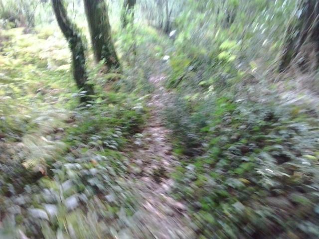 Ruta del Domingo 24/08/´14 (San Bartolo) 2014-043