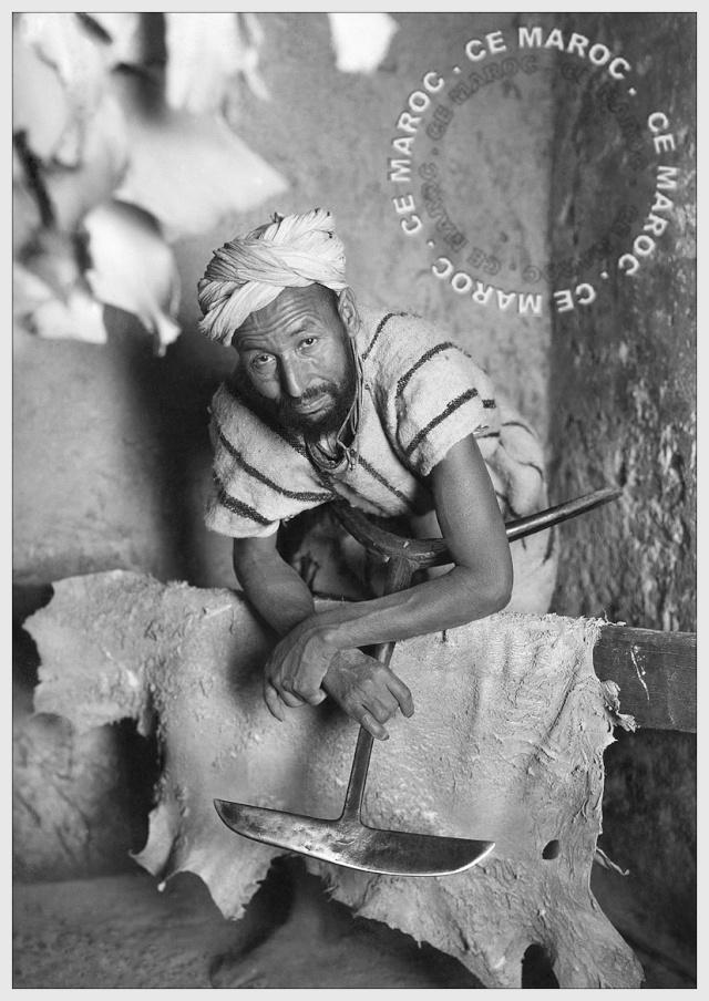 Fez : les tanneurs et l'artisanat du cuir. 13610
