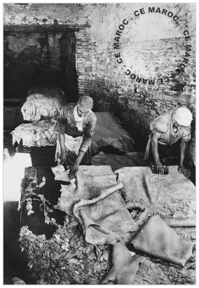 Fez : les tanneurs et l'artisanat du cuir. 13810