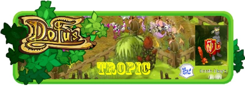 [Phase 2] Candidature de Tropic / Deuxieme Bannie10