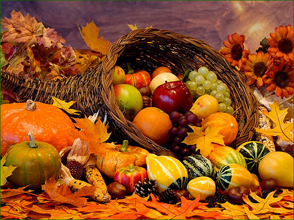 Pour bien vivre l'automne Fruits10