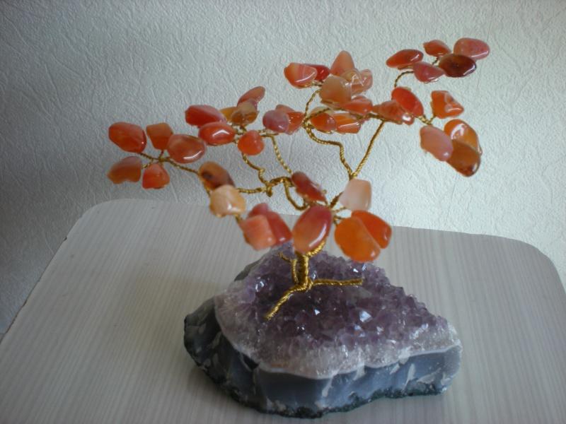 Quelques jolies pierres pas courantes... de ma collection Photos12
