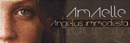 Les bannières Amaell12
