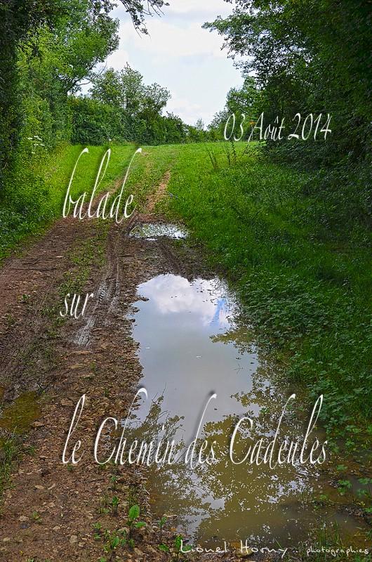 Sur Le Chemin des Cadeules 2014 01_dsc11