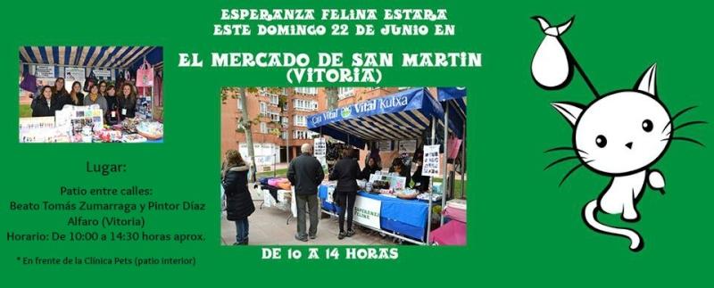 Esperanza Felina en el mercado del Barrio de San Martin. Domingo 22/06/14 Vitoria 10302110