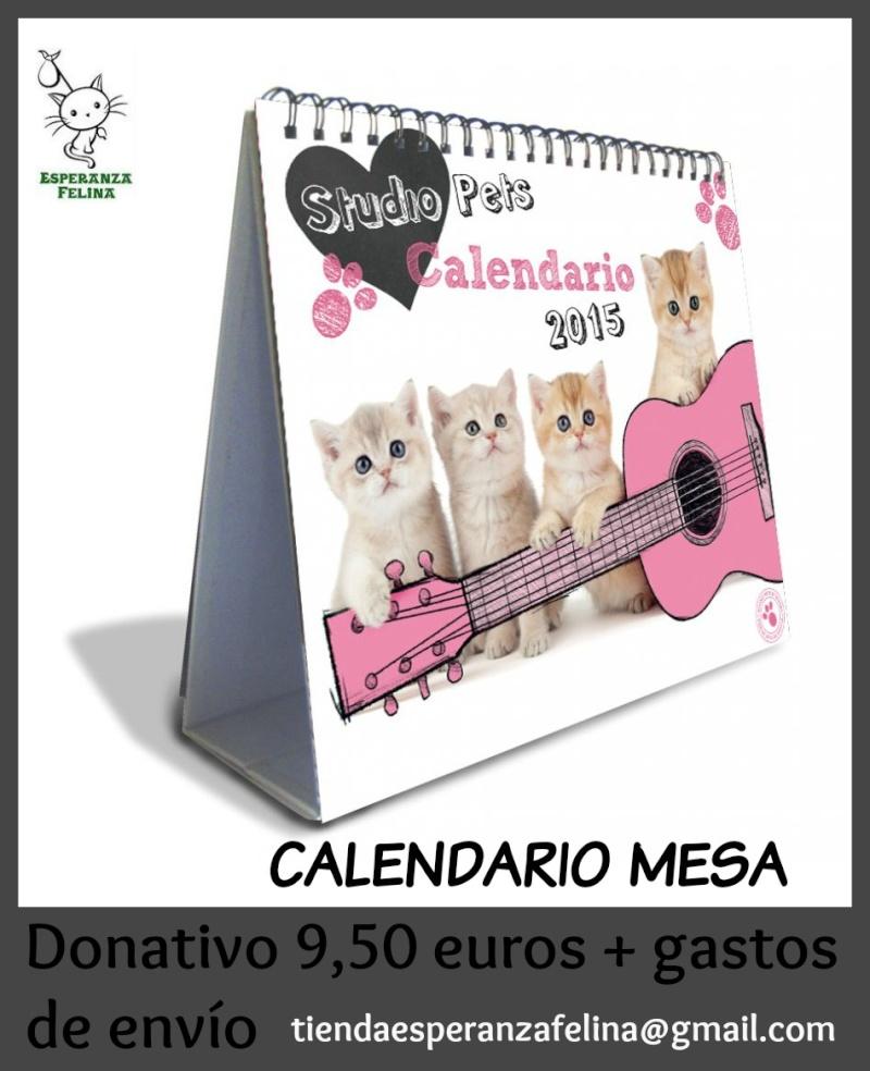 Productos 2015: Agendas, agendas espiral, calendarios, libretas... Calend12