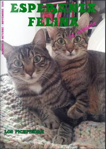 Revista Esperanza Felina. Décimo Número  Nymero10