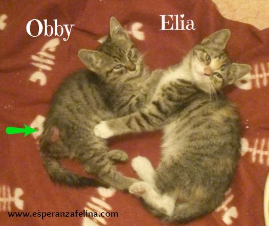 Obby y Elia Obby_y10