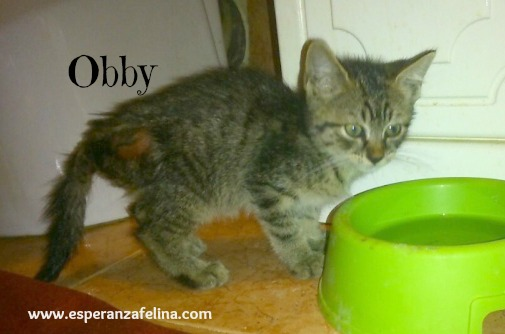 Obby y Elia Obby_y13