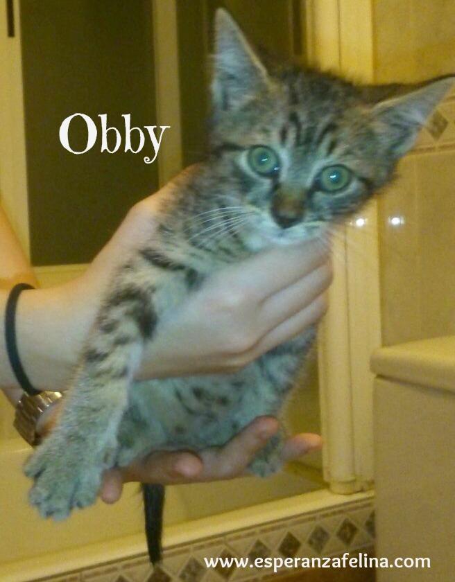 Obby y Elia Obby_y14