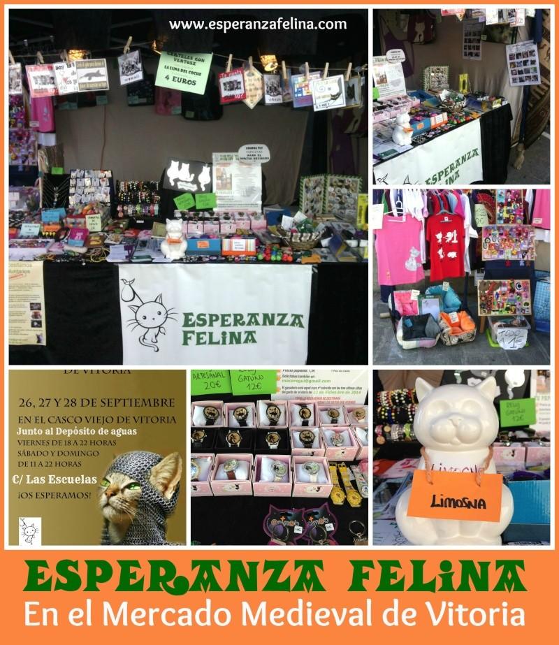 Esperanza Felina en el Mercado Medieval de Vitoria. 26, 27 y  28 de Sepetiembre 2014 Picmon39