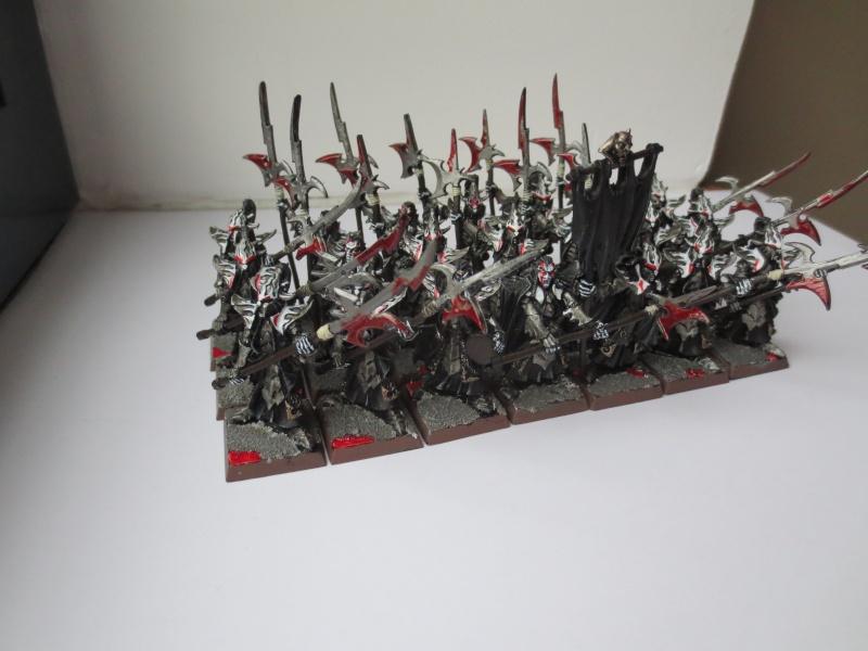 [Elfes Noirs] la Légion de la Succube Noire Gardes11