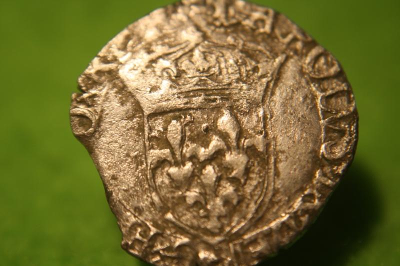 Sol parisis de Charles IX  Img_8319