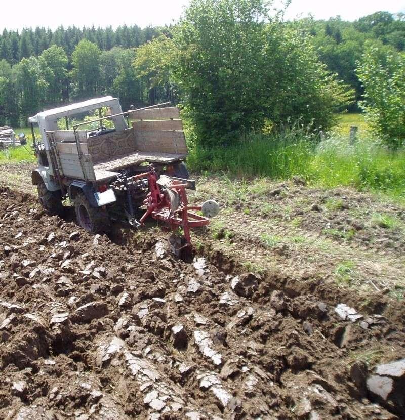 Travaux des champs avec un U411 P1010010