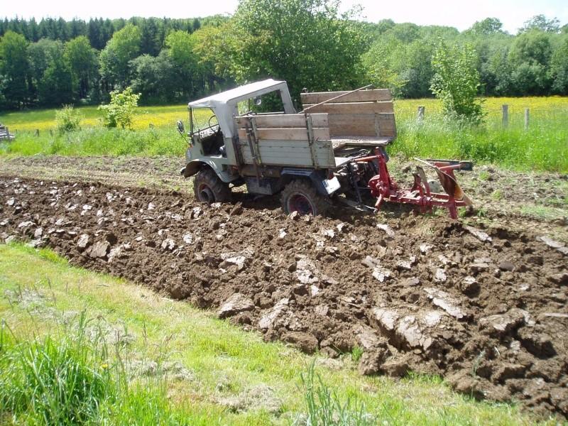 Travaux des champs avec un U411 P1010011
