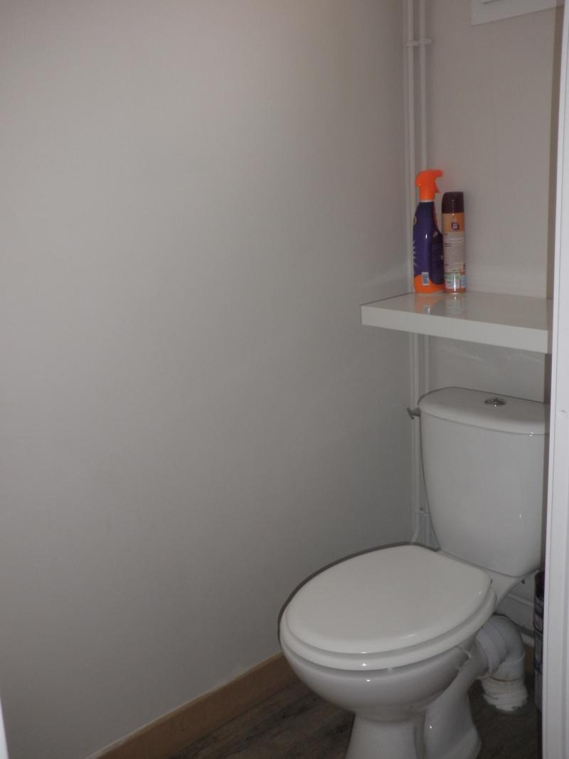 peinture des toilettes P6030110