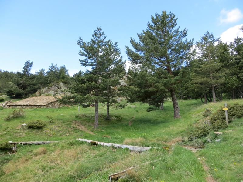 Sentier des Bergeries (Jujols) Img_0717