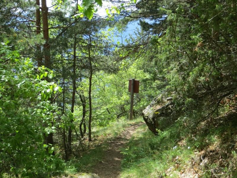 Sentier des Bergeries (Jujols) Img_0718