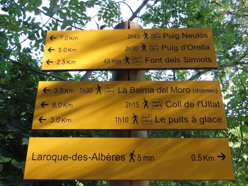 Le Pic d'Aureille de Laroque des Albères Img_0815
