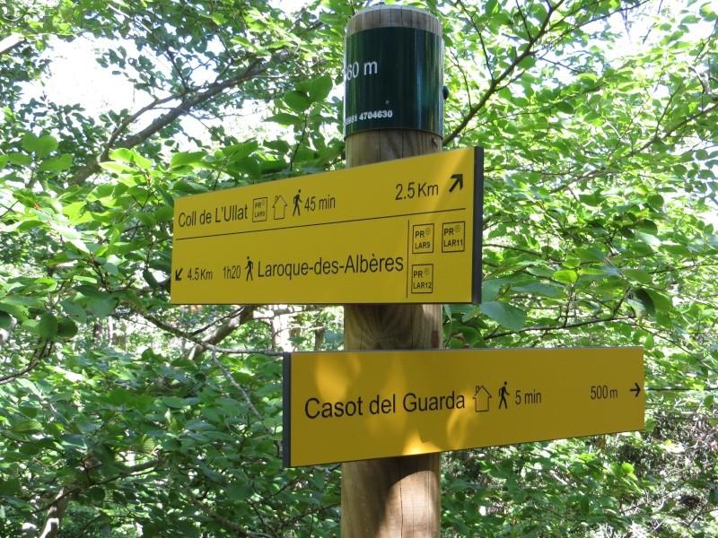 Le Pic d'Aureille de Laroque des Albères Img_0910